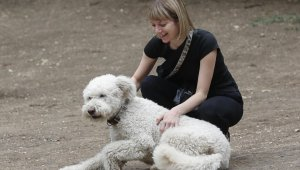 fiatal nő nagy fehér kutyával